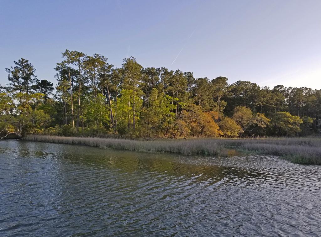 April 12 Tom Point Creek