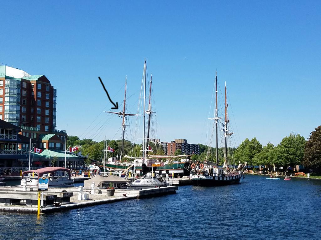 Brockville tall ship