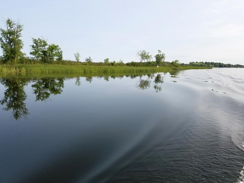 Trent River