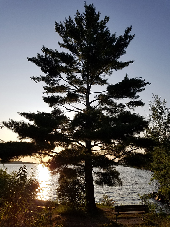 Parry Sound sunset